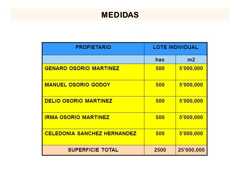 MEDIDAS PROPIETARIOLOTE INDIVIDUAL hasm2 GENARO OSORIO MARTINEZ5005000,000 MANUEL OSORIO GODOY5005000,000 DELIO OSORIO MARTINEZ5005000,000 IRMA OSORIO