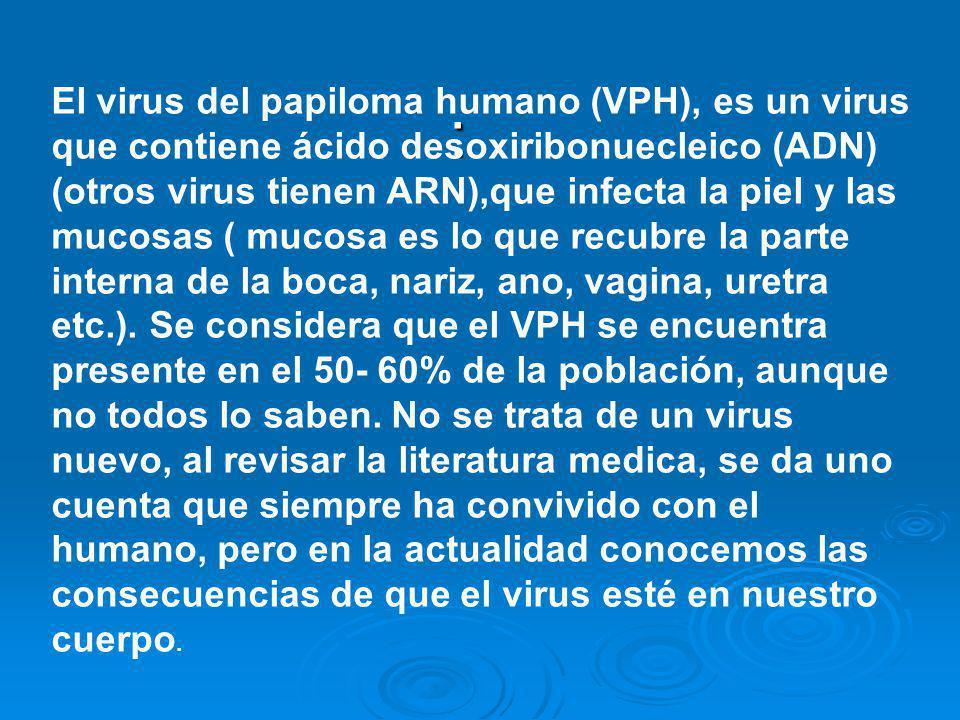 : El virus del papiloma humano (VPH), es un virus que contiene ácido desoxiribonuecleico (ADN) (otros virus tienen ARN),que infecta la piel y las muco