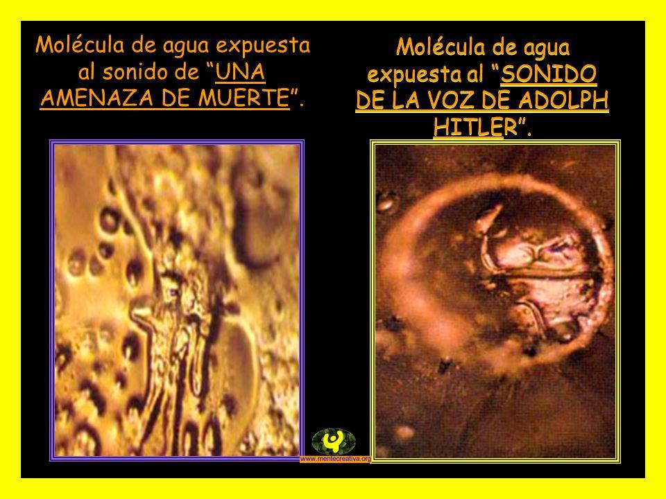 Molécula de agua expuesta al SONIDO DE LA VOZ DE ADOLPH HITLER.