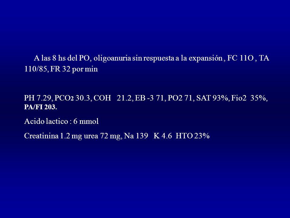 A las 8 hs del PO, oligoanuria sin respuesta a la expansión, FC 11O, TA 110/85, FR 32 por min PH 7.29, PCO 2 30.3, COH 21.2, EB -3 71, PO2 71, SAT 93%, Fio2 35%, PA/FI 203.