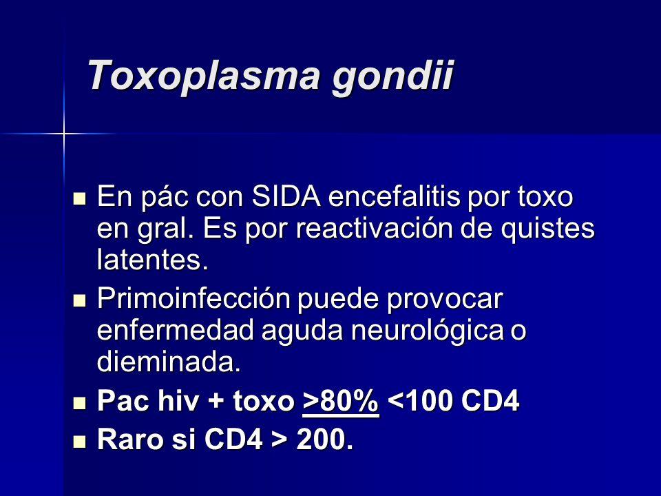 Toxoplasma gondii En pác con SIDA encefalitis por toxo en gral. Es por reactivación de quistes latentes. En pác con SIDA encefalitis por toxo en gral.