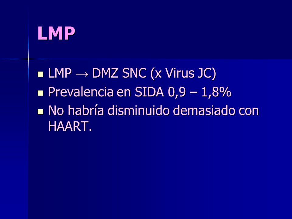 LMP LMP DMZ SNC (x Virus JC) LMP DMZ SNC (x Virus JC) Prevalencia en SIDA 0,9 – 1,8% Prevalencia en SIDA 0,9 – 1,8% No habría disminuido demasiado con HAART.