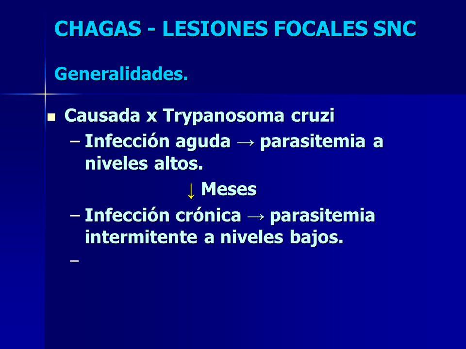 Causada x Trypanosoma cruzi Causada x Trypanosoma cruzi –Infección aguda parasitemia a niveles altos. Meses Meses –Infección crónica parasitemia inter