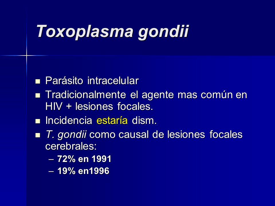 Toxoplasma gondii Parásito intracelular Parásito intracelular Tradicionalmente el agente mas común en HIV + lesiones focales. Tradicionalmente el agen