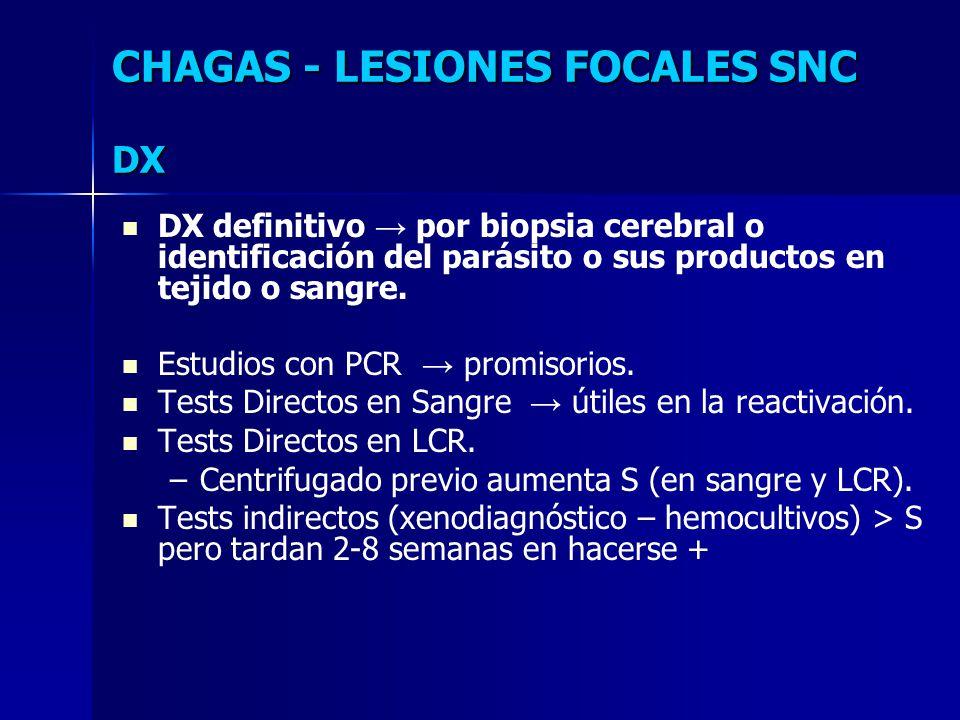 DX definitivo por biopsia cerebral o identificación del parásito o sus productos en tejido o sangre. Estudios con PCR promisorios. Tests Directos en S