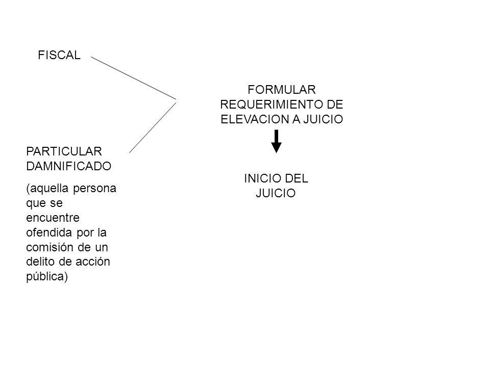 FISCAL PARTICULAR DAMNIFICADO (aquella persona que se encuentre ofendida por la comisión de un delito de acción pública) FORMULAR REQUERIMIENTO DE ELE
