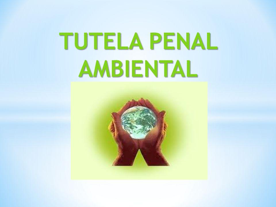 En nuestro Sistema, la Ley 28611- Ley General del Ambiente en su Art.