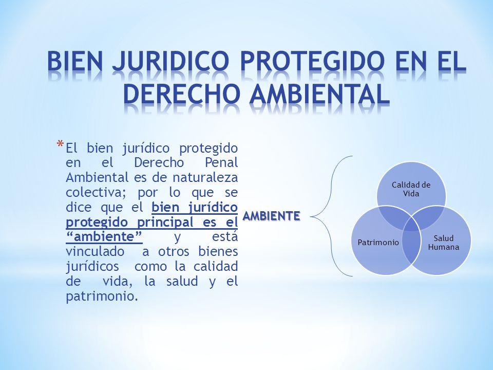 * El bien jurídico protegido en el Derecho Penal Ambiental es de naturaleza colectiva; por lo que se dice que el bien jurídico protegido principal es el ambiente y está vinculado a otros bienes jurídicos como la calidad de vida, la salud y el patrimonio.