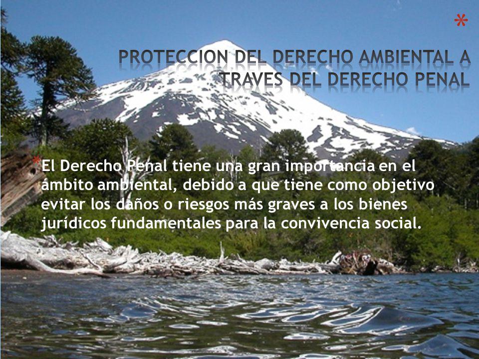 * El Derecho Penal tiene una gran importancia en el ámbito ambiental, debido a que tiene como objetivo evitar los daños o riesgos más graves a los bienes jurídicos fundamentales para la convivencia social.