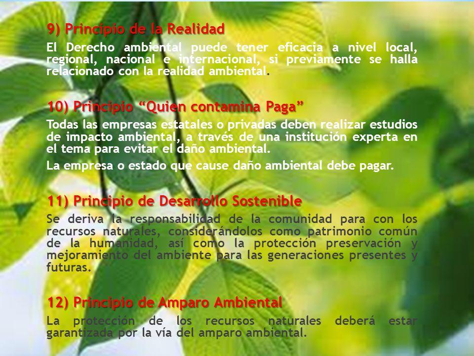 9) Principio de la Realidad El Derecho ambiental puede tener eficacia a nivel local, regional, nacional e internacional, si previamente se halla relacionado con la realidad ambiental.