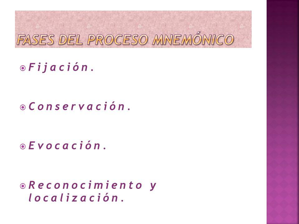Fijación. Conservación. Evocación. Reconocimiento y localización.