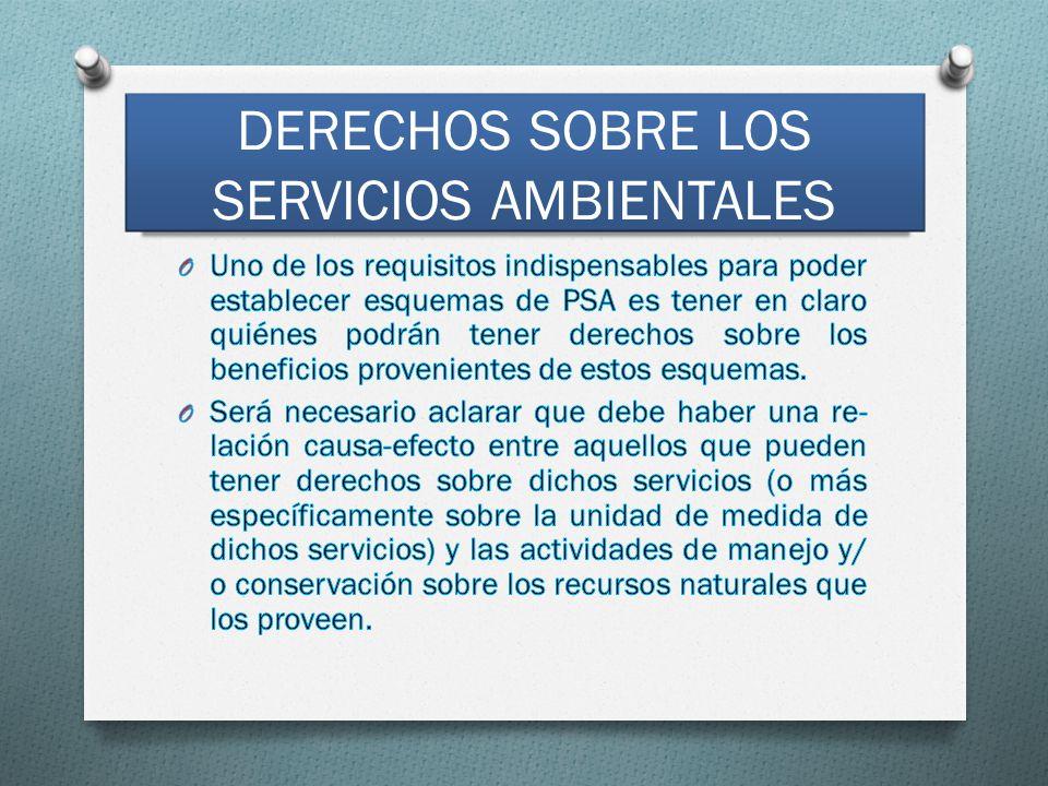 DERECHOS SOBRE LOS SERVICIOS AMBIENTALES