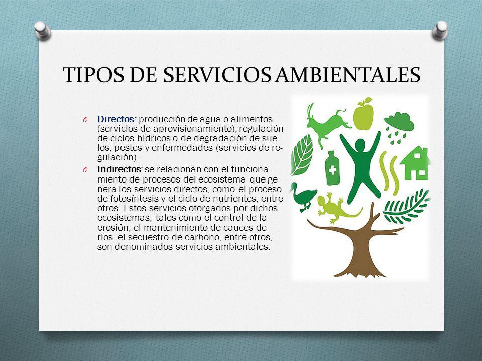 TIPOS DE SERVICIOS AMBIENTALES O Directos: producción de agua o alimentos (servicios de aprovisionamiento), regulación de ciclos hídricos o de degrada