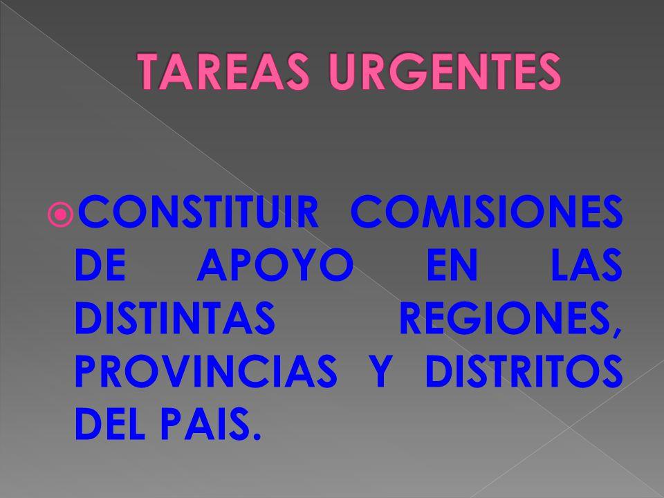 CONSTITUIR COMISIONES DE APOYO EN LAS DISTINTAS REGIONES, PROVINCIAS Y DISTRITOS DEL PAIS.