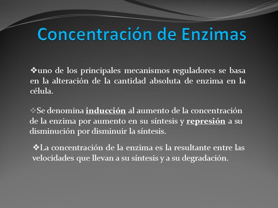Se denomina inducción al aumento de la concentración de la enzima por aumento en su síntesis y represión a su disminución por disminuir la síntesis. u