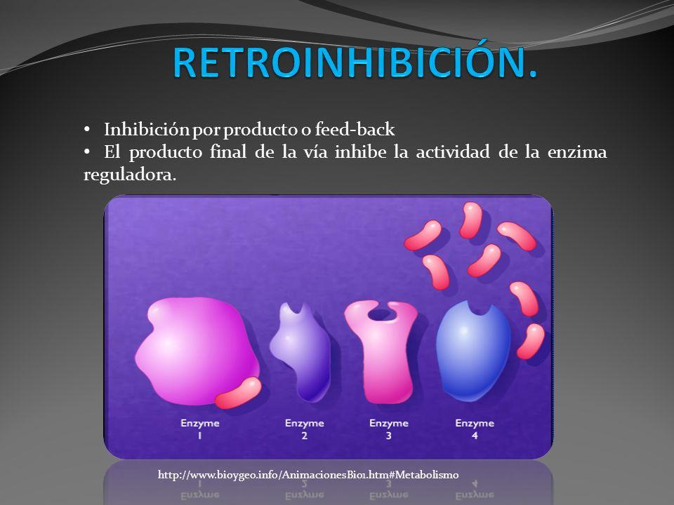 Inhibición por producto o feed-back El producto final de la vía inhibe la actividad de la enzima reguladora. http://www.bioygeo.info/AnimacionesBio1.h