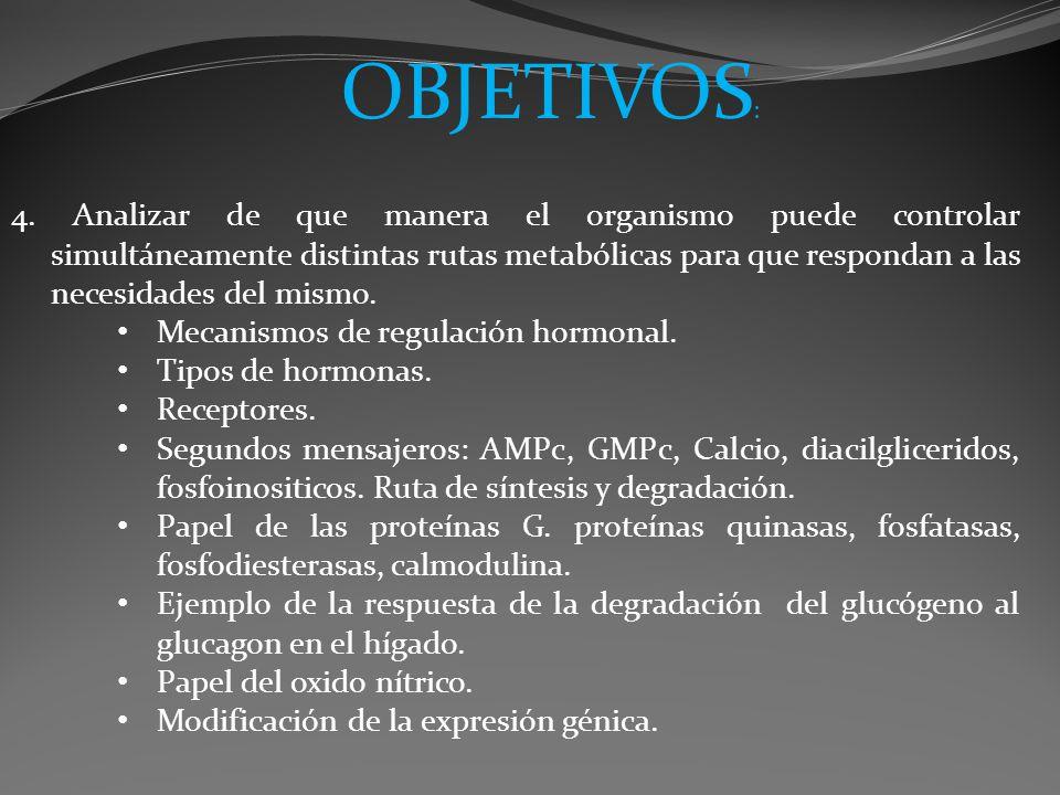 4. Analizar de que manera el organismo puede controlar simultáneamente distintas rutas metabólicas para que respondan a las necesidades del mismo. Mec