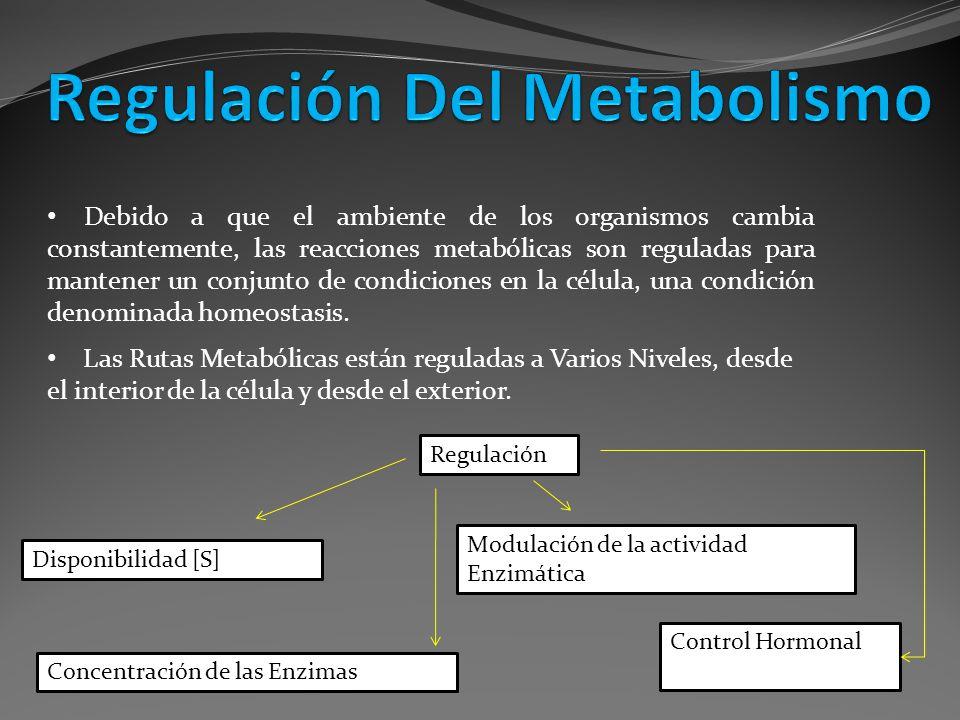 Las Rutas Metabólicas están reguladas a Varios Niveles, desde el interior de la célula y desde el exterior. Debido a que el ambiente de los organismos