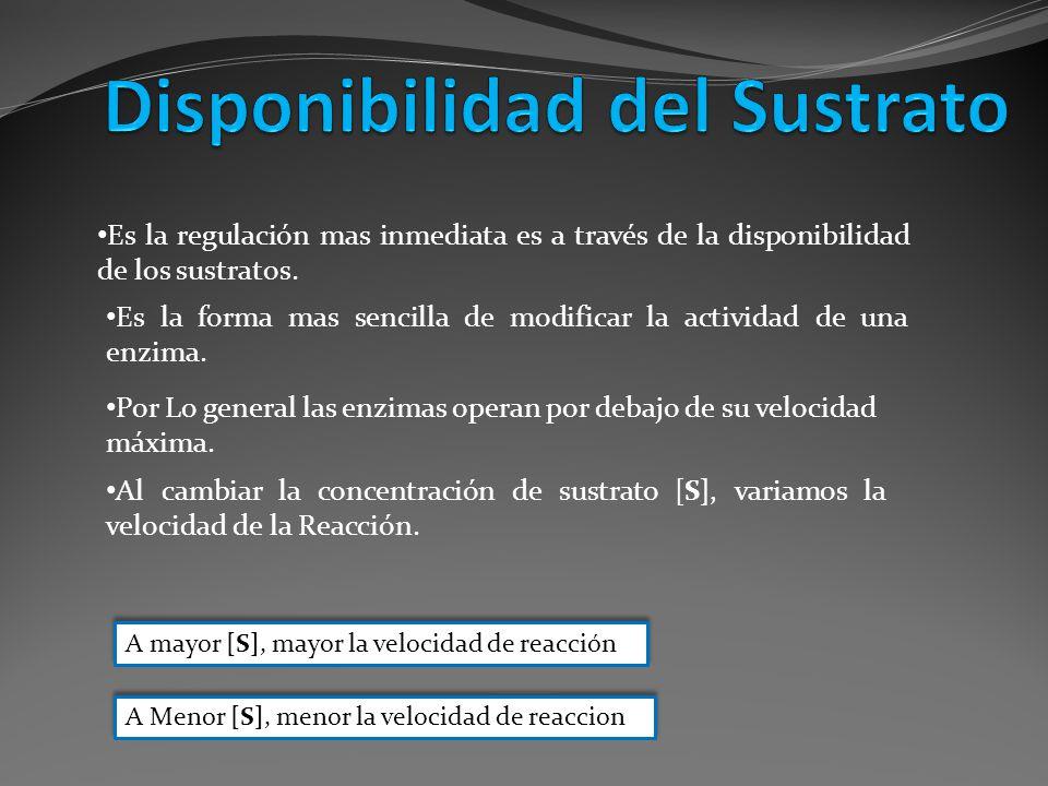Diacilgliceridos (DAG) Guía de estudios de bioquímica Prof. Magnolia.