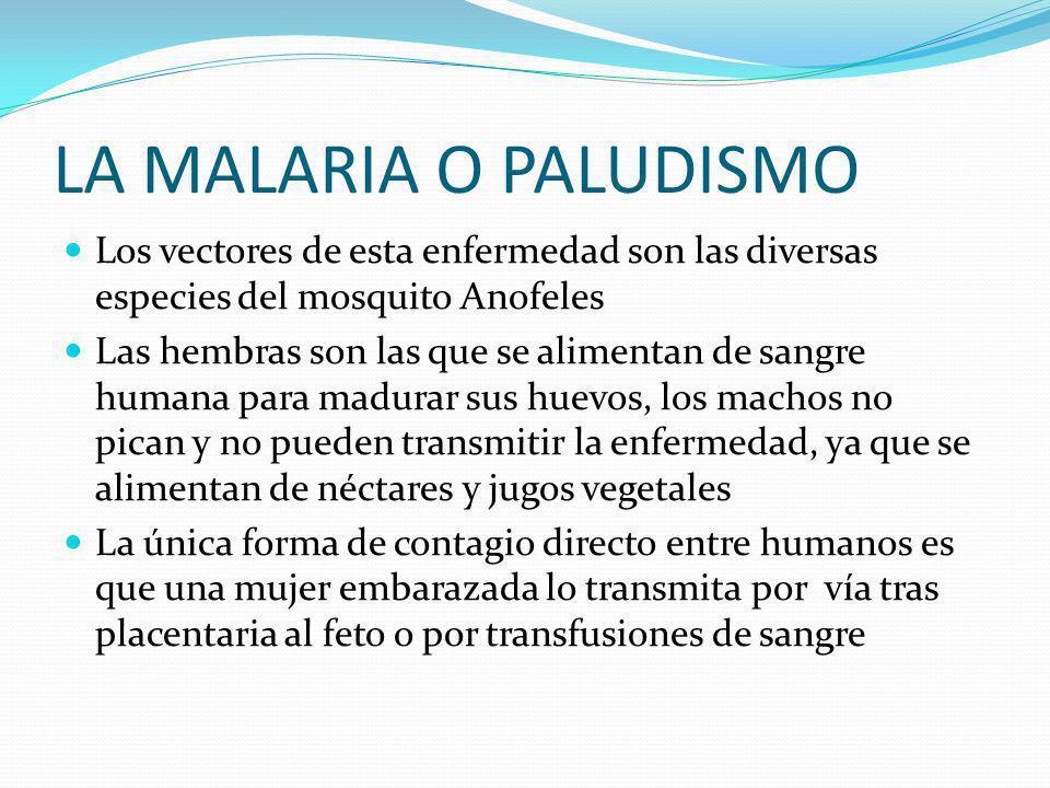 LA MALARIA O PALUDISMO Enfermedad que se transmite por medio de la picadura de la hembra del mosquito anofeles. El termino malaria proviene del Italia