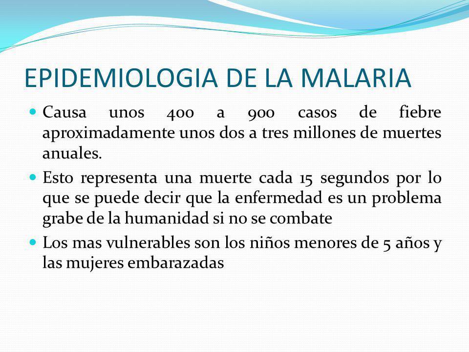 MALARIA O PALUDISMO En regiones donde la malaria es altamente endémica las personas son tan a menudo infectadas que desarrollan inmunidad adquirida, e