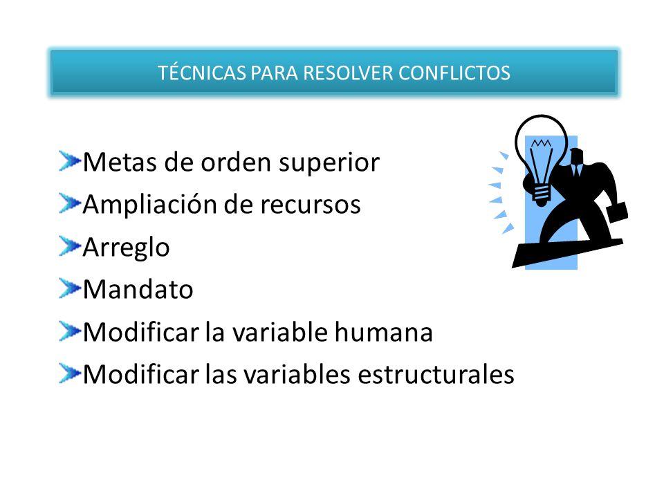 Metas de orden superior Ampliación de recursos Arreglo Mandato Modificar la variable humana Modificar las variables estructurales TÉCNICAS PARA RESOLV