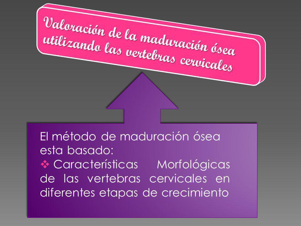 El método de maduración ósea esta basado: Características Morfológicas de las vertebras cervicales en diferentes etapas de crecimiento