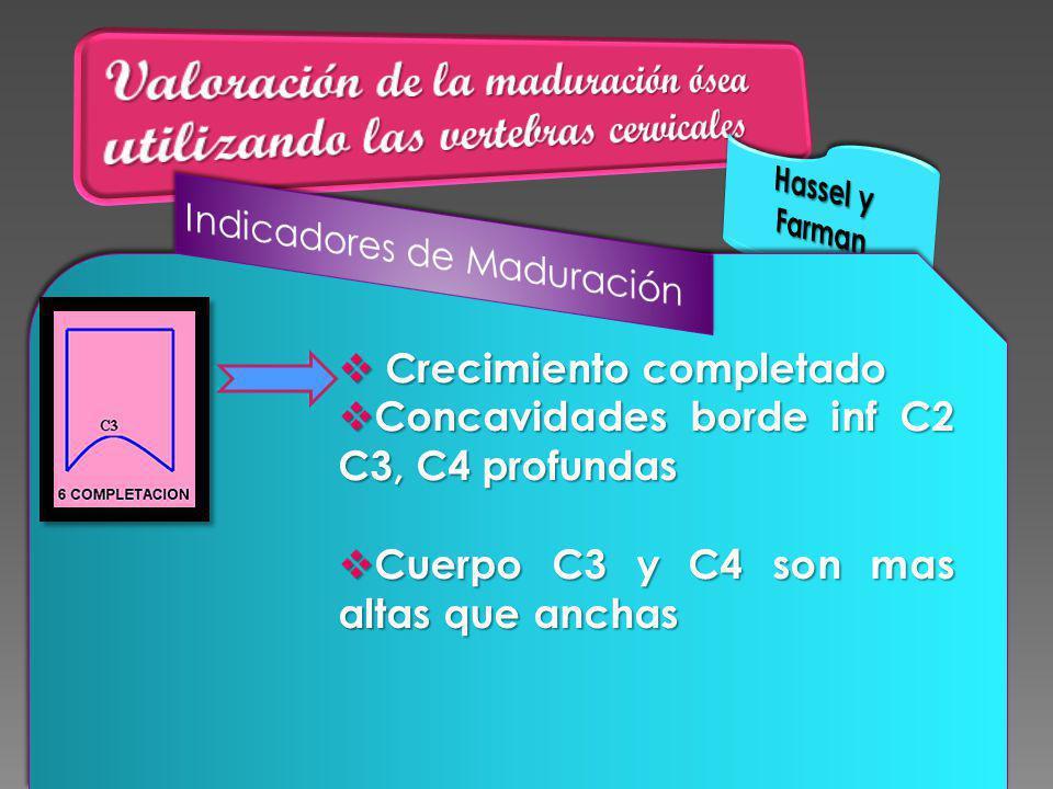 Crecimiento completado Crecimiento completado Concavidades borde inf C2 C3, C4 profundas Concavidades borde inf C2 C3, C4 profundas Cuerpo C3 y C4 son