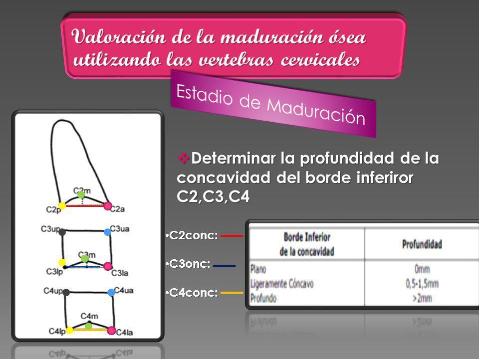 Determinar la profundidad de la concavidad del borde inferiror C2,C3,C4 Determinar la profundidad de la concavidad del borde inferiror C2,C3,C4 C2conc: C2conc: C3onc: C3onc: C4conc: C4conc: