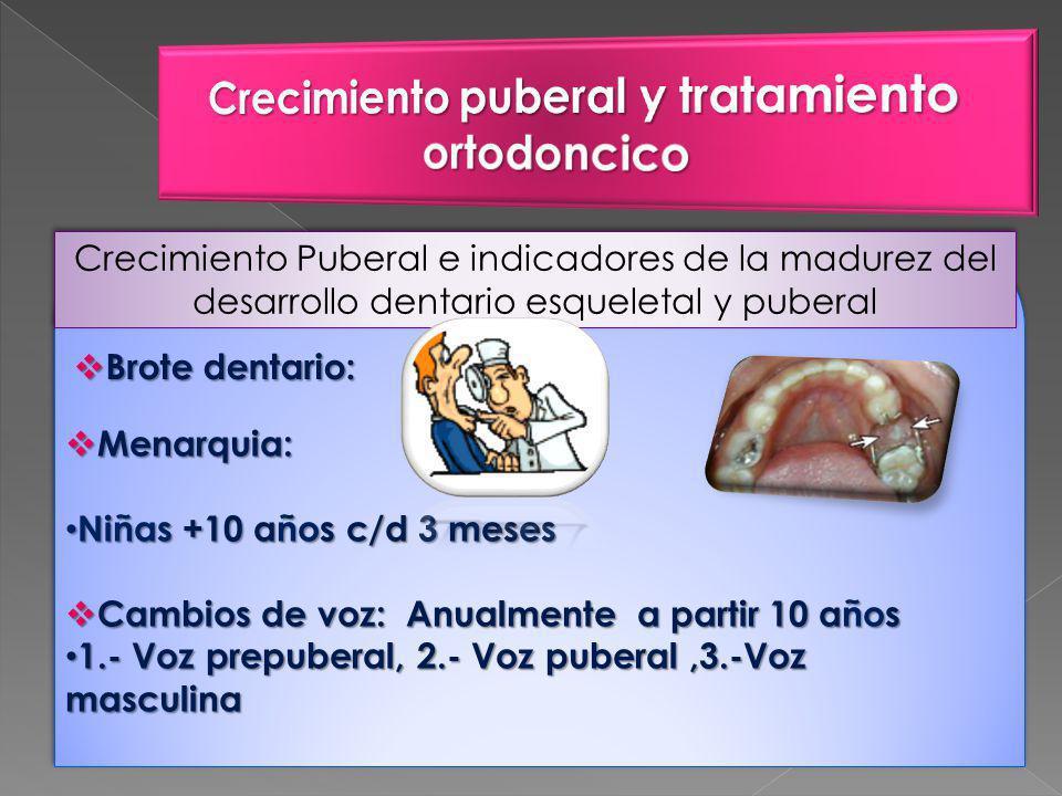 Crecimiento Puberal e indicadores de la madurez del desarrollo dentario esqueletal y puberal Brote dentario: Brote dentario: Menarquia: Menarquia: Niñas +10 años c/d 3 meses Niñas +10 años c/d 3 meses Cambios de voz: Anualmente a partir 10 años Cambios de voz: Anualmente a partir 10 años 1.- Voz prepuberal, 2.- Voz puberal,3.-Voz masculina 1.- Voz prepuberal, 2.- Voz puberal,3.-Voz masculina