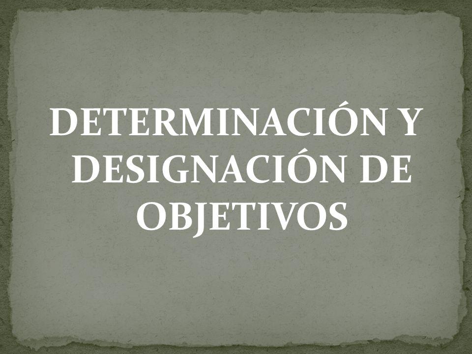 1.INTRODUCCIÓN 2. DESARROLLO - Conceptualización - Generalidades - Designación de objetivos 3.