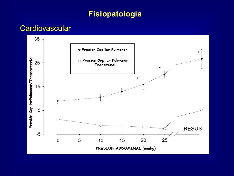 Fisiopatología Cardiovascular Presion Capilar Pulmonar Transmural PRESIÓN ABDOMINAL (mmhg) Presión CapilarPulmonar/Transarterial