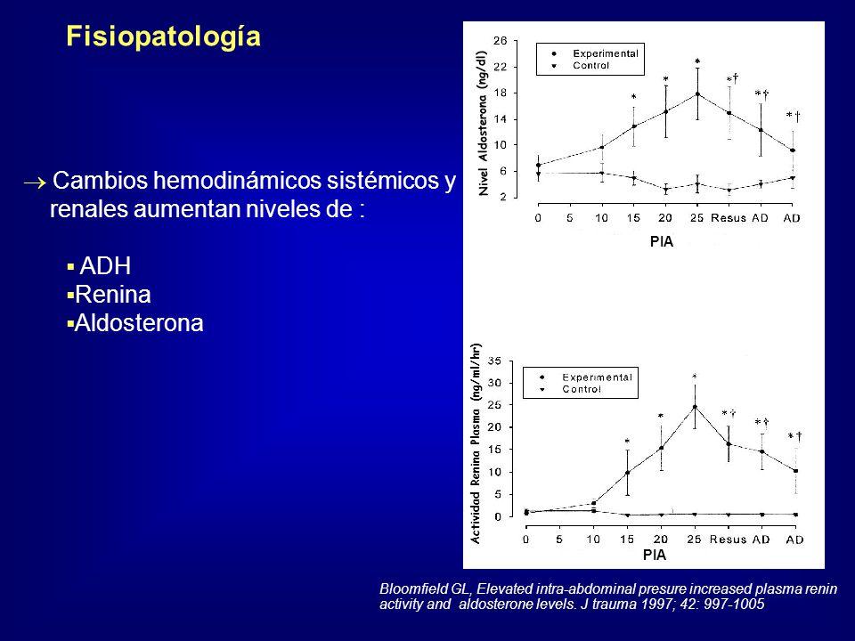 Nivel Aldosterona (ng/dl) Actividad Renina Plasma (ng/ml/hr) Fisiopatología Cambios hemodinámicos sistémicos y renales aumentan niveles de : ADH Renin