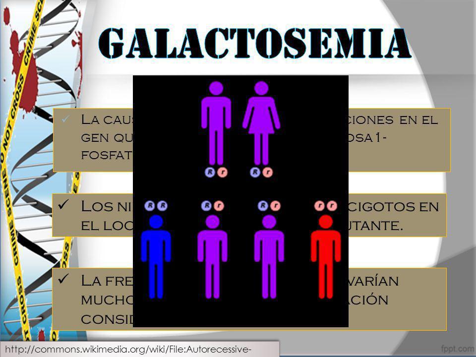 La causa mas frecuente son mutaciones en el gen que codifica la enzima galactosa1- fosfato uridiltrasferasa (GALT). Los niños afectados son homocigoto