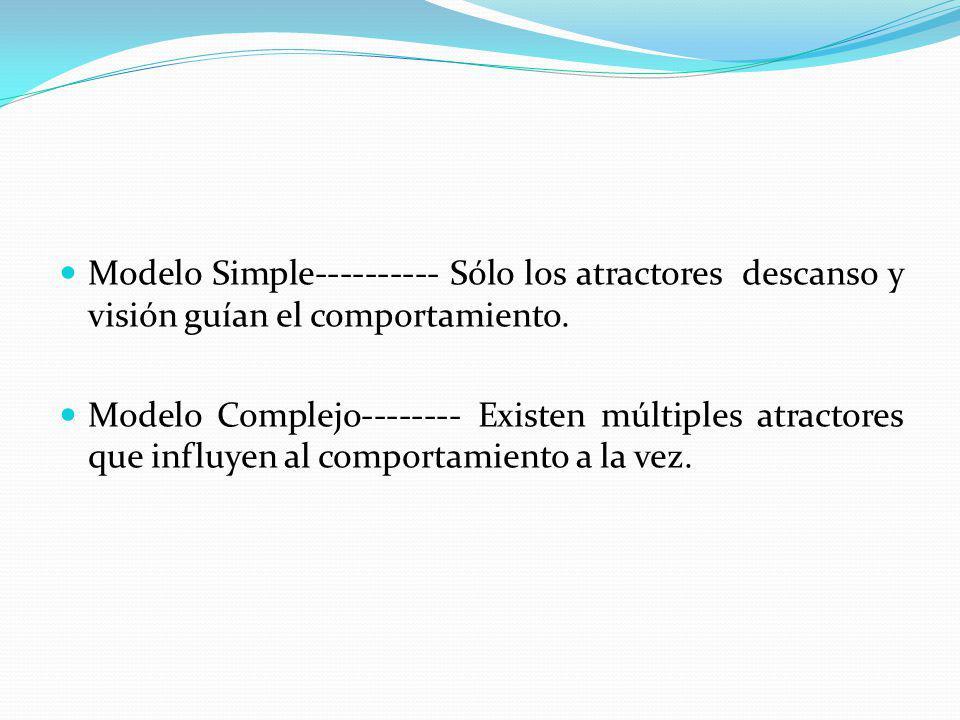 Modelo Simple---------- Sólo los atractores descanso y visión guían el comportamiento. Modelo Complejo-------- Existen múltiples atractores que influy