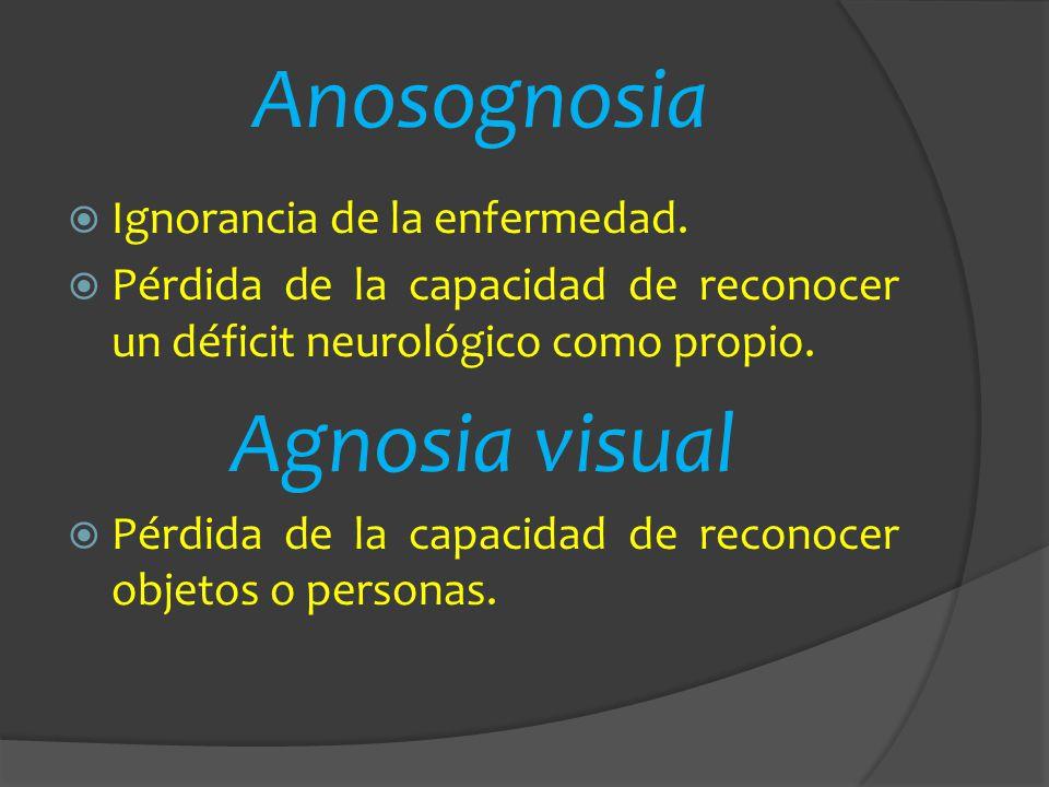 Anosognosia Ignorancia de la enfermedad. Pérdida de la capacidad de reconocer un déficit neurológico como propio. Agnosia visual Pérdida de la capacid