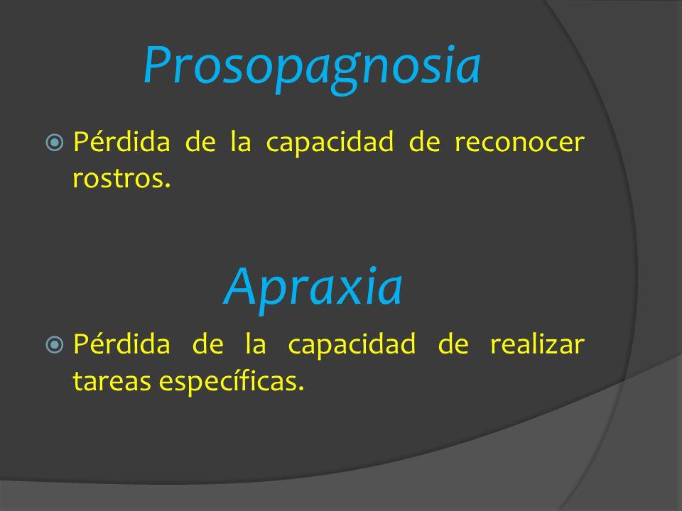 Prosopagnosia Pérdida de la capacidad de reconocer rostros. Apraxia Pérdida de la capacidad de realizar tareas específicas.