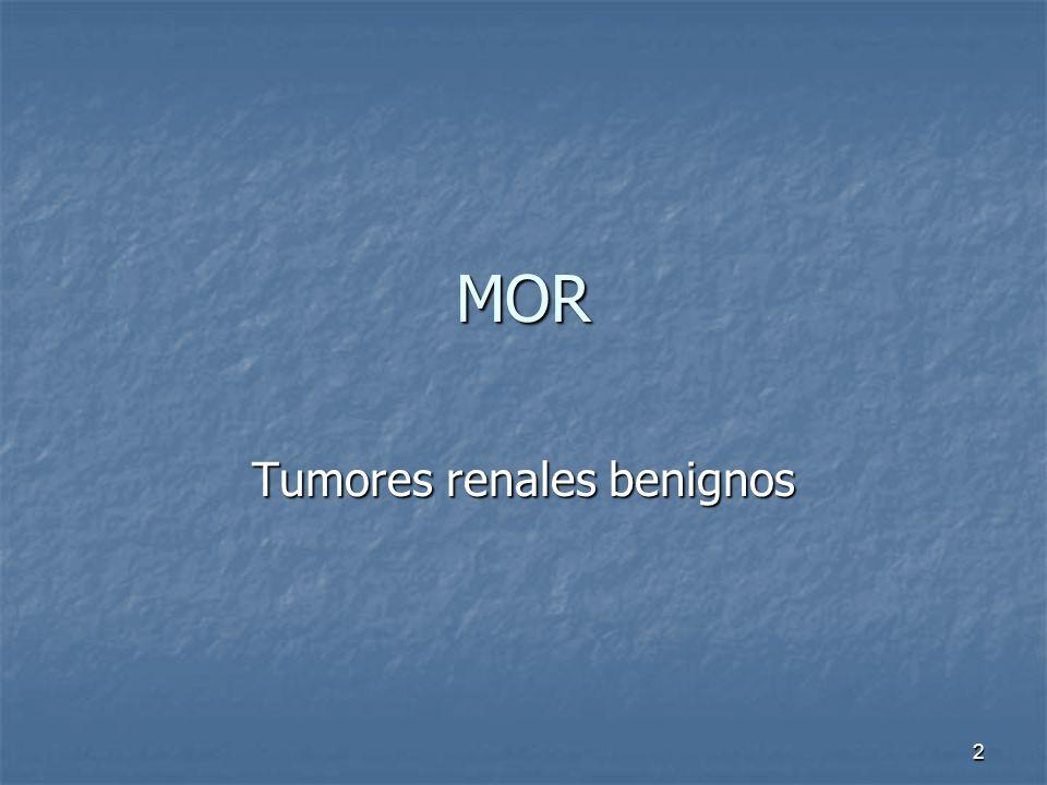 MOR Tumores renales benignos 2