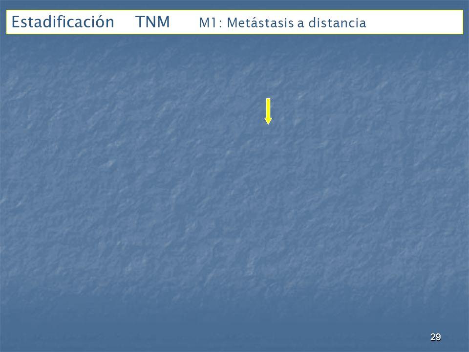 Estadificación TNM M1: Metástasis a distancia 29