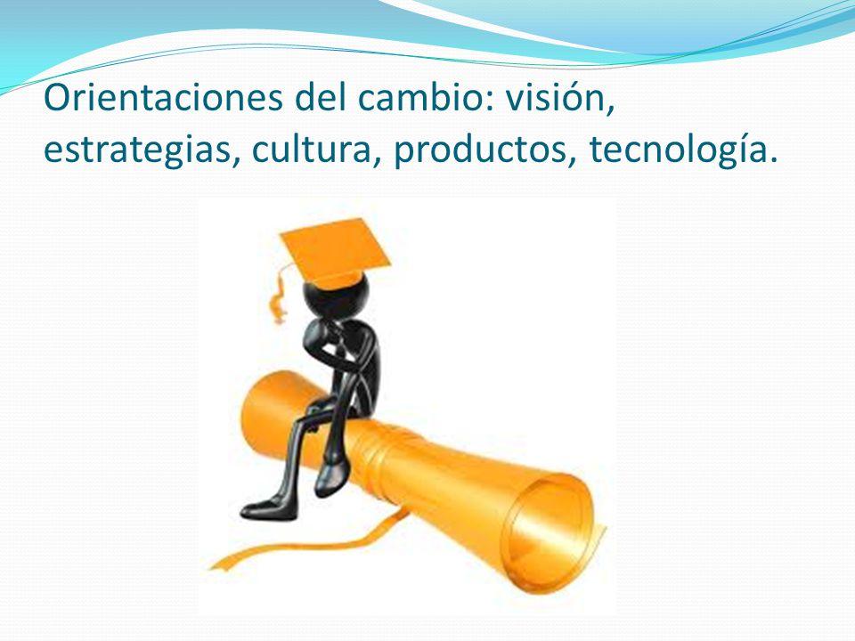Orientaciones del cambio: visión, estrategias, cultura, productos, tecnología.