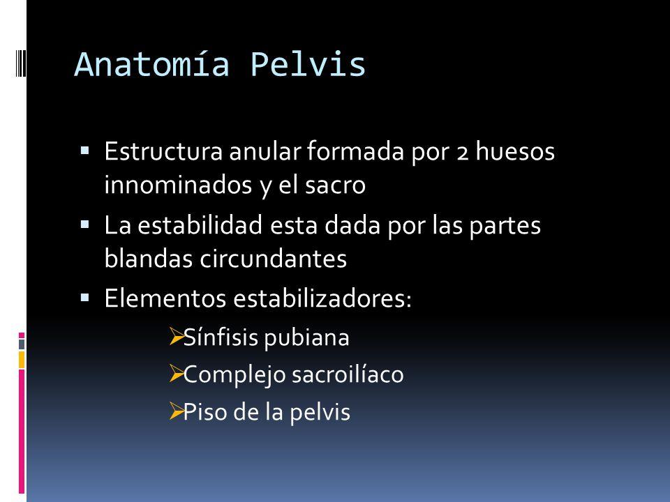 Anatomía Pelvis Estructura anular formada por 2 huesos innominados y el sacro La estabilidad esta dada por las partes blandas circundantes Elementos e