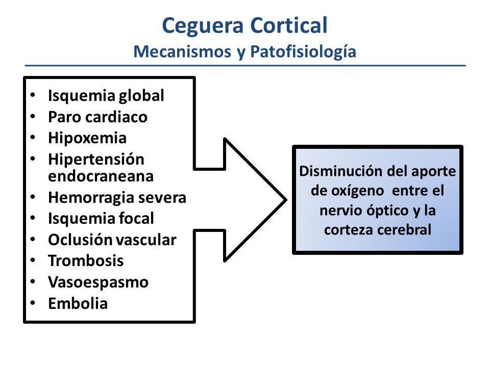 Ceguera Cortical Mecanismos y Patofisiología Isquemia global Paro cardiaco Hipoxemia Hipertensión endocraneana Hemorragia severa Isquemia focal Oclusi