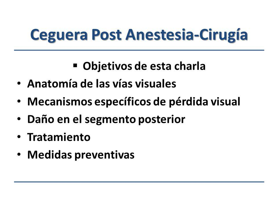 Ceguera Post Anestesia-Cirugía Objetivos de esta charla Anatomía de las vías visuales Mecanismos específicos de pérdida visual Daño en el segmento pos