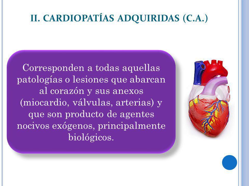 II. CARDIOPATÍAS ADQUIRIDAS (C.A.) Corresponden a todas aquellas patologías o lesiones que abarcan al corazón y sus anexos (miocardio, válvulas, arter