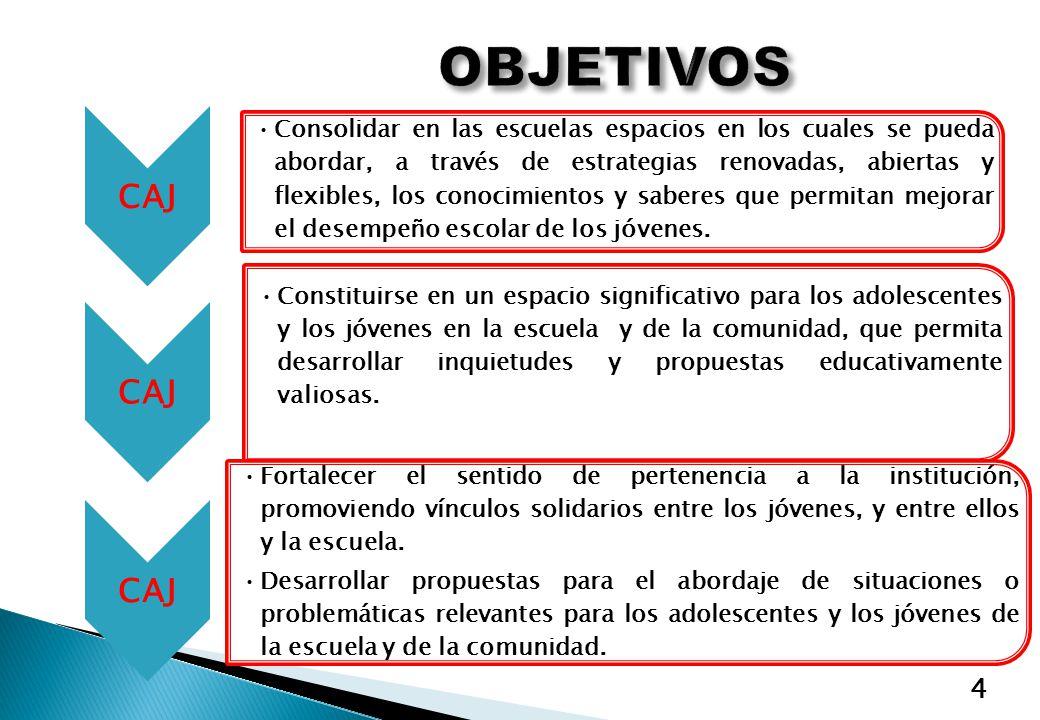 5 LAS ACCIONES CONTEMPLADAS EN LOS CAJ SERÁN PARTE CONSTITUTIVA DEL P.E.I.