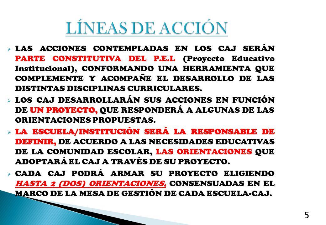 5 LAS ACCIONES CONTEMPLADAS EN LOS CAJ SERÁN PARTE CONSTITUTIVA DEL P.E.I. (Proyecto Educativo Institucional), CONFORMANDO UNA HERRAMIENTA QUE COMPLEM