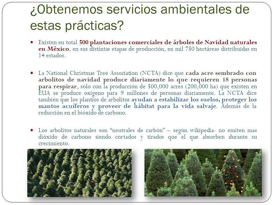 ¿Contaminan más los árboles naturales o los artificiales.