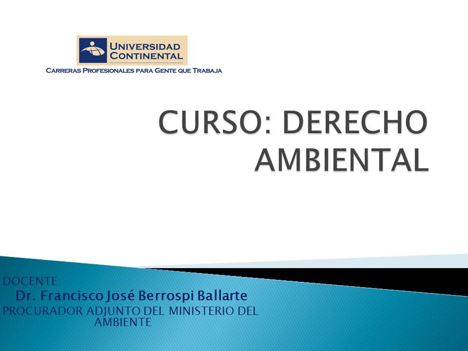 DOCENTE: Dr. Francisco José Berrospi Ballarte PROCURADOR ADJUNTO DEL MINISTERIO DEL AMBIENTE