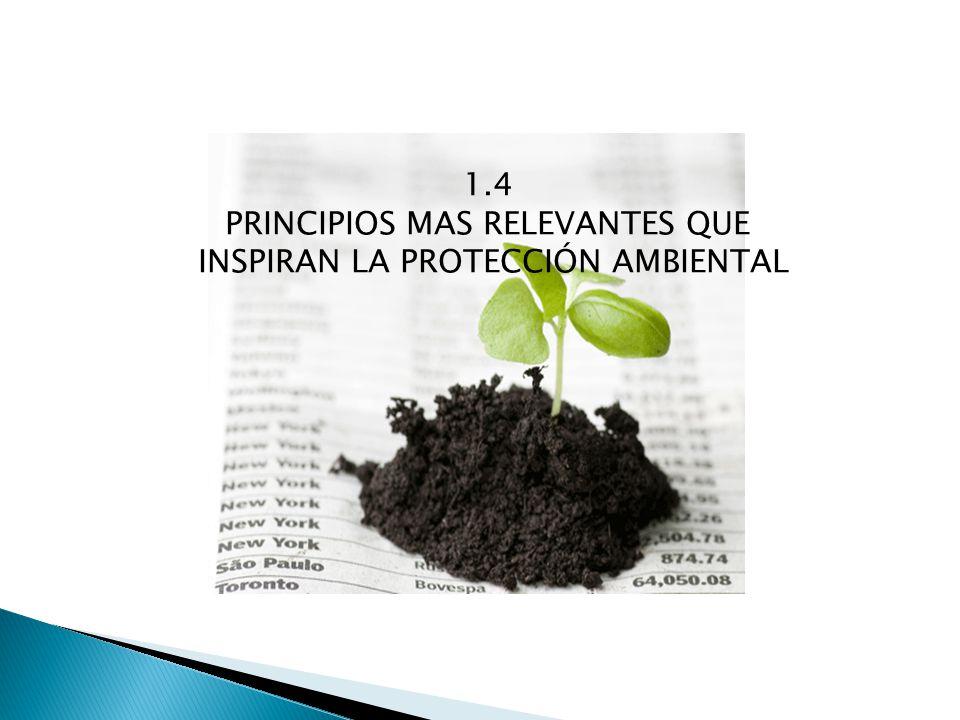 1.4 PRINCIPIOS MAS RELEVANTES QUE INSPIRAN LA PROTECCIÓN AMBIENTAL