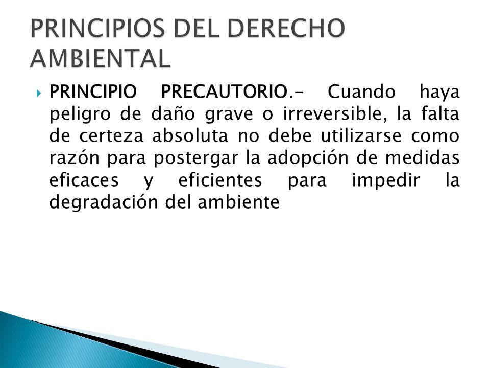 PRINCIPIO PRECAUTORIO.- Cuando haya peligro de daño grave o irreversible, la falta de certeza absoluta no debe utilizarse como razón para postergar la adopción de medidas eficaces y eficientes para impedir la degradación del ambiente